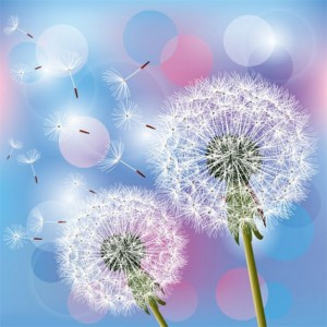 floating-dandelion-seeds-with-bubbles-background.jpg